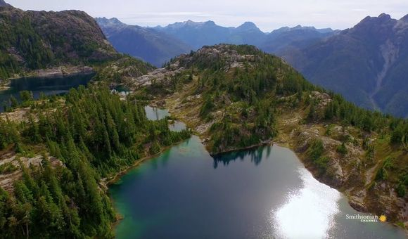 Preview thumbnail for video'The Glaciers of Vancouver Island May Disappear Within Our Lifetime