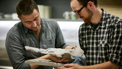 The Earliest Baleen Whales Literally Sucked