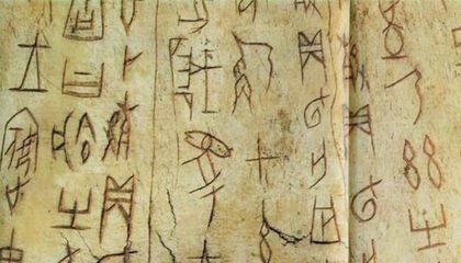 Museum Offers $15,000 Per Character to Decipher Oracle Bone Script
