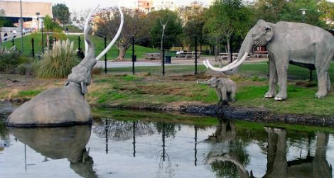 A woolly mammoth sinks into the tar at the La Brea Tar Pits in Los Angeles.