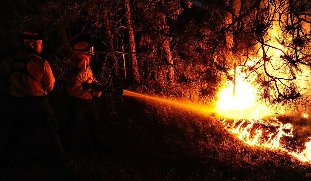 Wildland managers are looking for new ways to manage fire risk