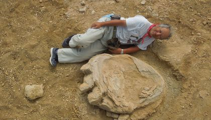Researchers Just Discovered One of the Largest Dinosaur Footprints Ever Found