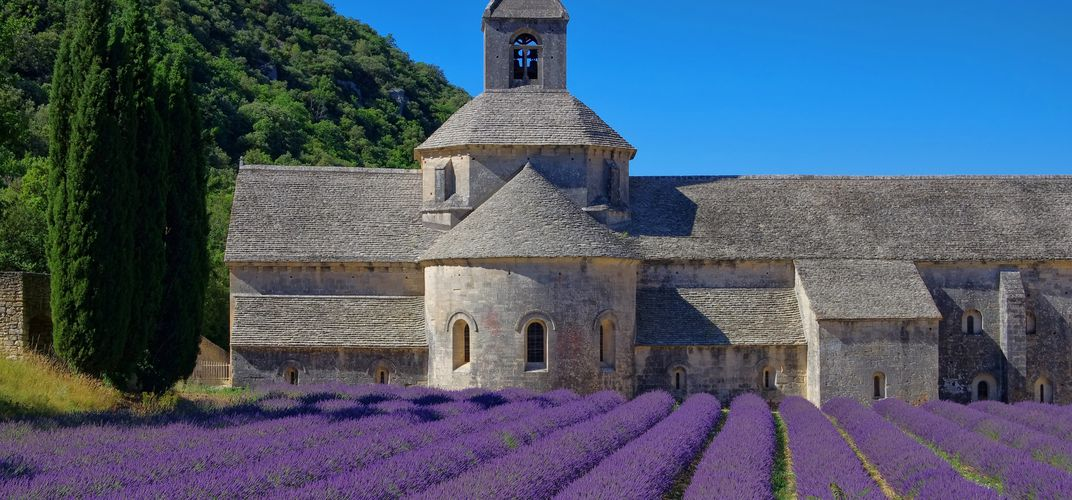 Senanque Abbey and lavender fields