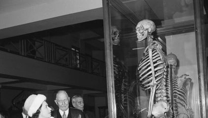 "Why the Skeleton of the ""Irish Giant"" Could Be Buried at Sea"