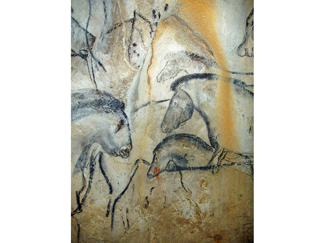 Finally The Beauty Of France S Chauvet Cave Makes Its
