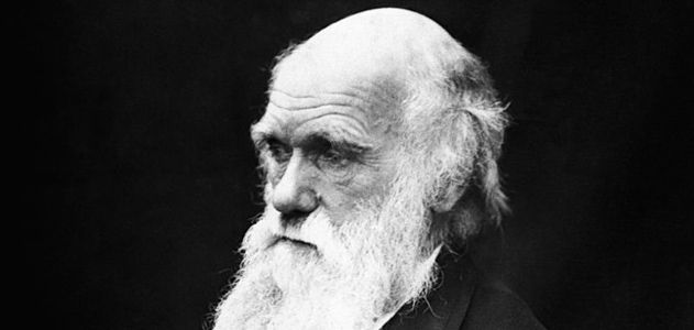 The Evolution of Charles Darwin | Science | Smithsonian Magazine