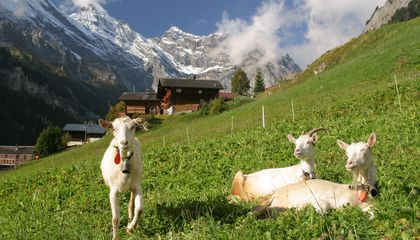 Rick Steves' Europe: Gimmelwald, Switzerland