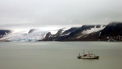 Arctic Algae Infiltration Demonstrates the Effects of Climate Change