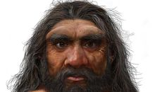 'Dragon Man' Might Be One of Our Closest Relatives
