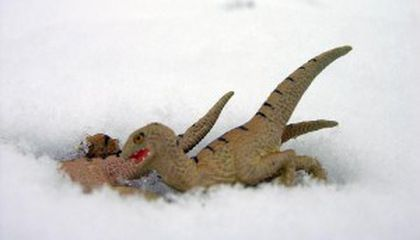 Hot and Cold Running Dinosaurs