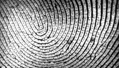 What Fingerprints Can Reveal About Ancestry