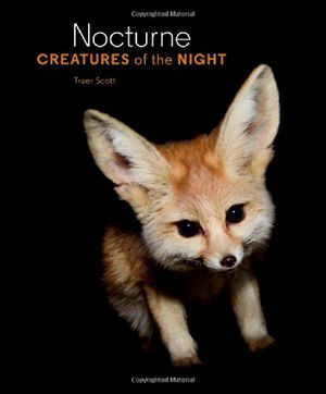 Preview thumbnail for video 'Nocturne: Creatures of the Night