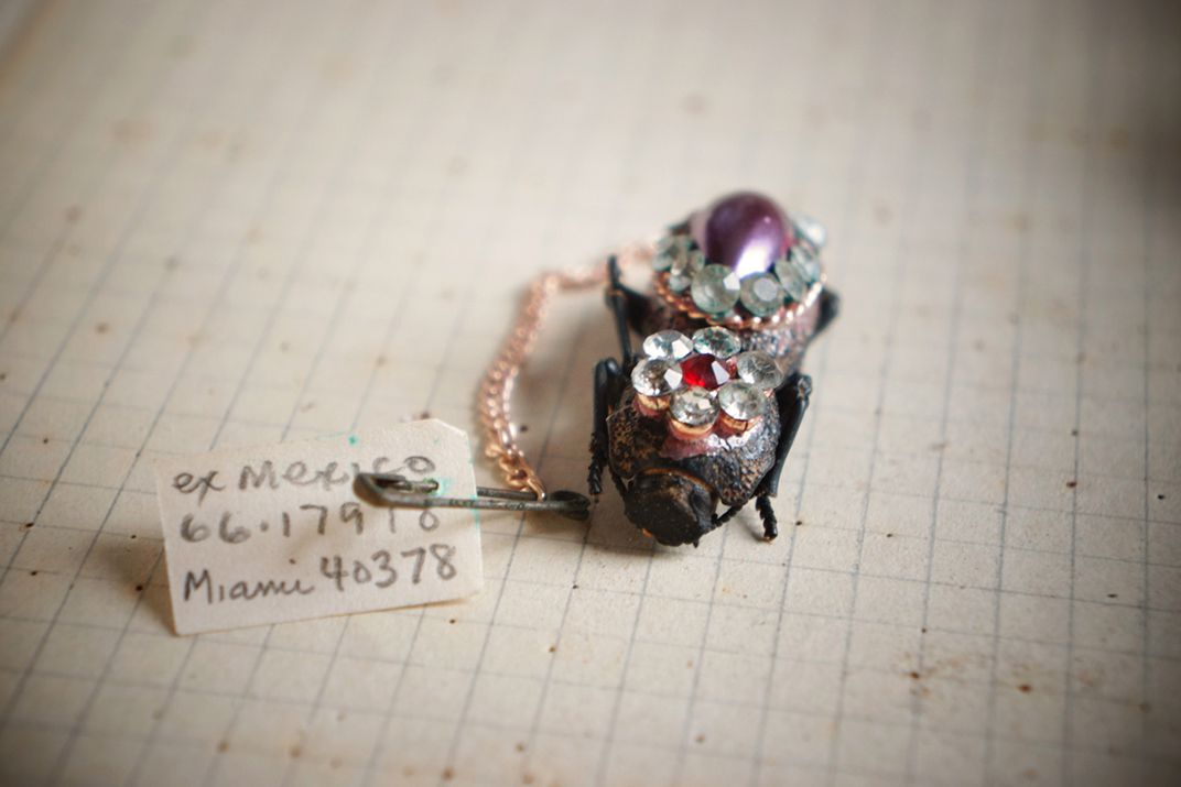 Meet the Makech the Bedazzled Beetles Worn as Living Jewelry At