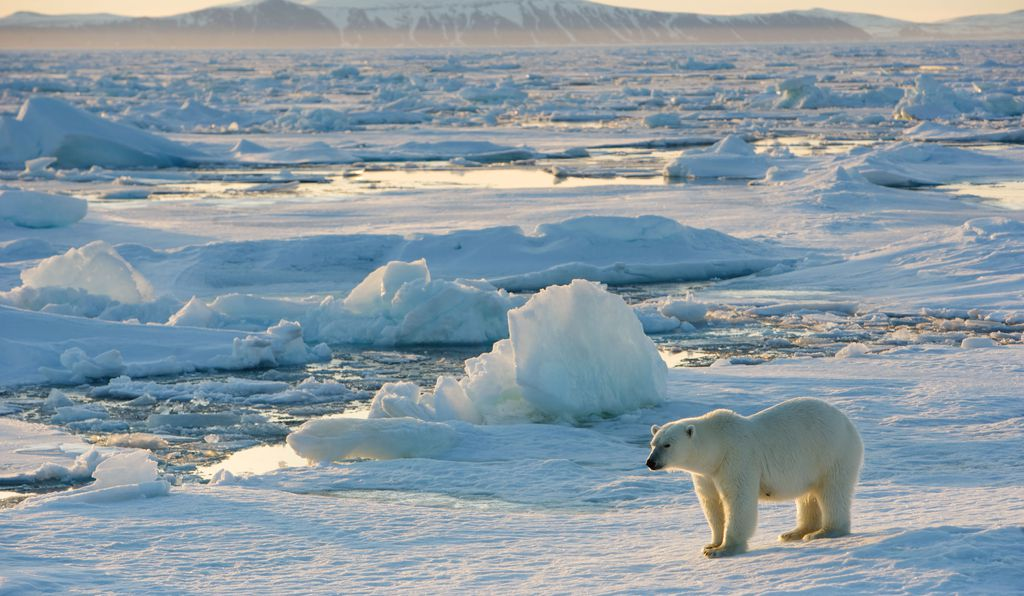 The Arctic is undergoing another unusually warm winter, but it's only part of the story of global climate change.