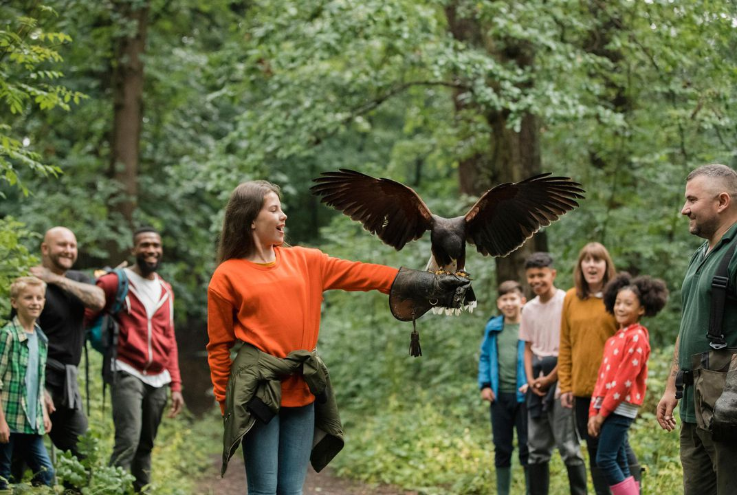 Six Spots Around the World Where You Can Try Your Hand at Falconry
