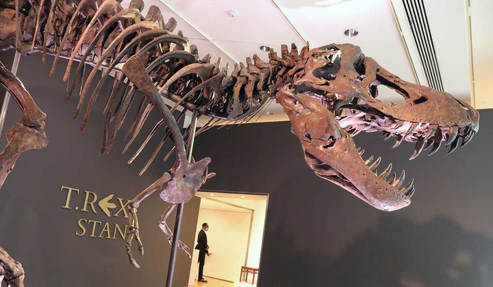 A T. Rex Sold for $31.8 Million