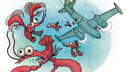 Flight of the Airsick Lobsters