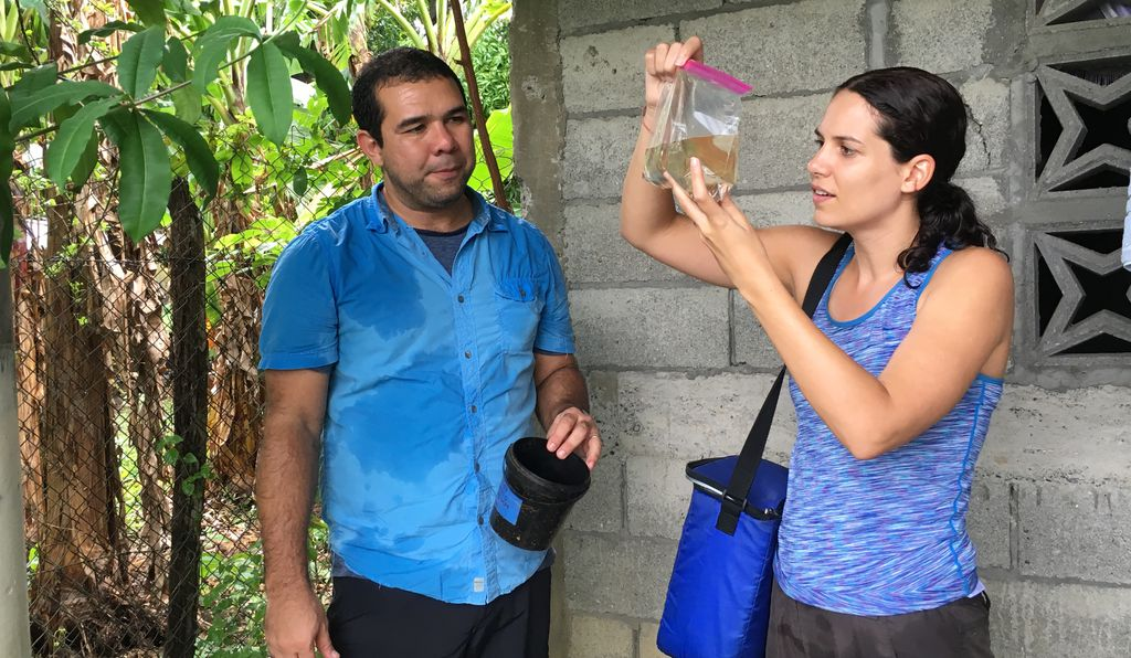 José Loaiza and Kelly Bennett note that more than 200 different mosquito species live in Panama.