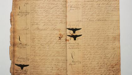 Logbooks From 19th Century Whaling Ships Could Help Climate Change Scientists
