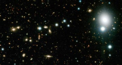 A selection of a new image of distant galaxies in the COSMOS field. Click to see the whole view.