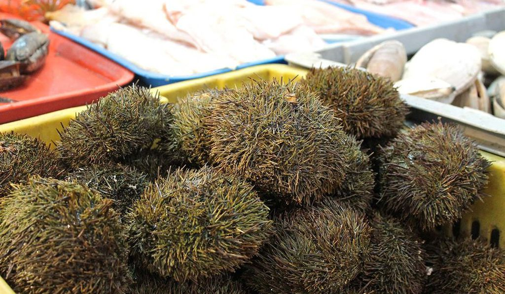 Seven foods you have to try in chile travel smithsonian for The fish market del mar