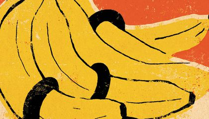 The Banana King, Surviving K2, the Allure of America and More Recent Books