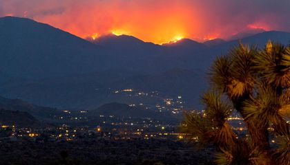 Wildfires Are Happening More Often and in More Places