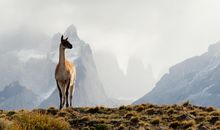 Chile's Patagonian Frontier