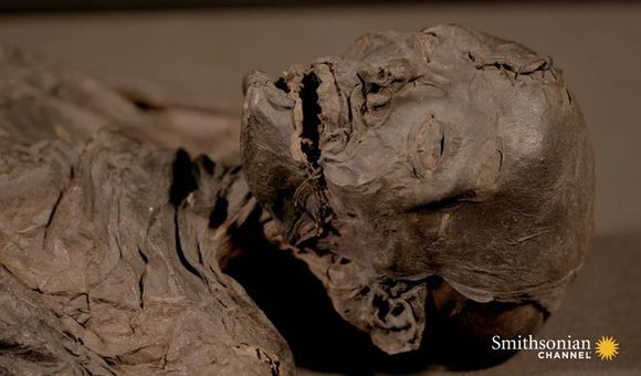 Preview thumbnail for video'Forensic Test Reveals a Mummy's Travels Before Death