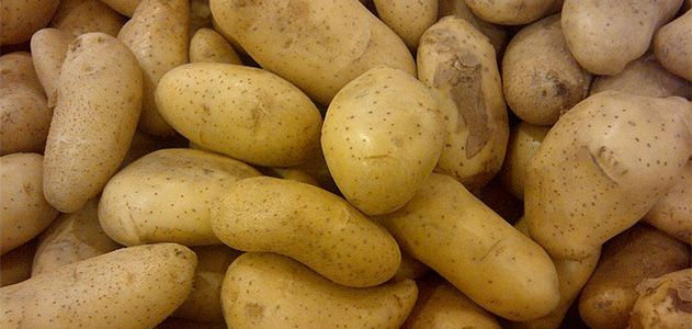 Horrific Tales of Potatoes That Caused Mass Sickness and Even Death