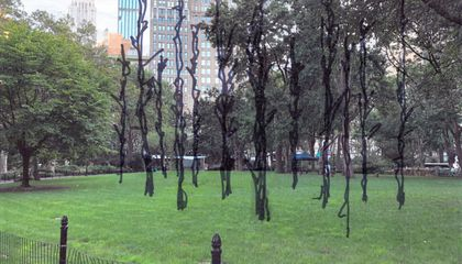 A 'Ghost Forest' Destroyed by Hurricane Sandy Will Be Resurrected in New York