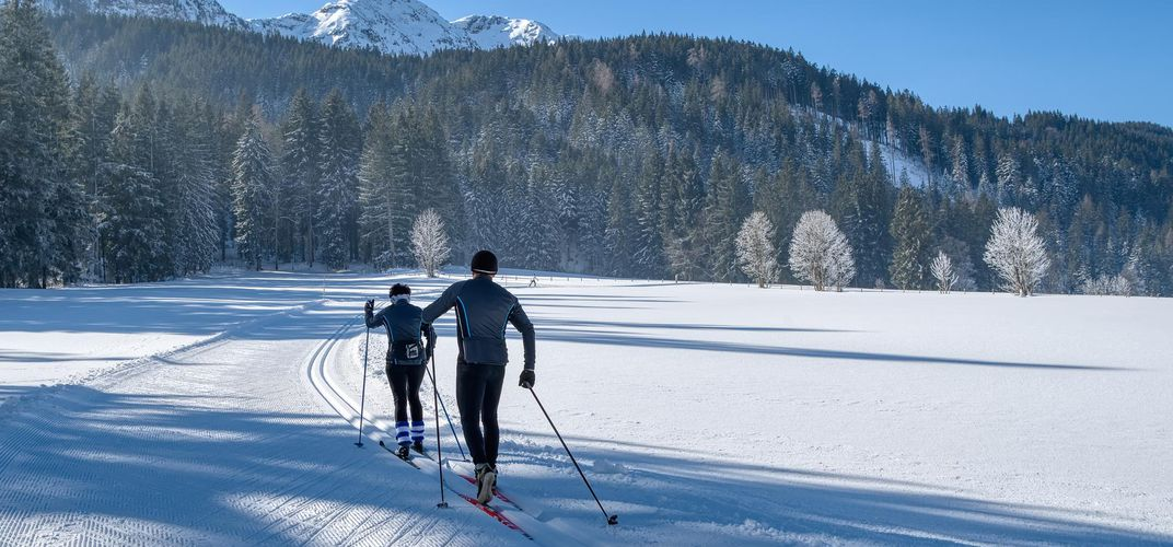 Cross country Alpine skiing