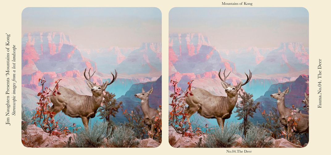 "A stereograph called ""The Deer"""