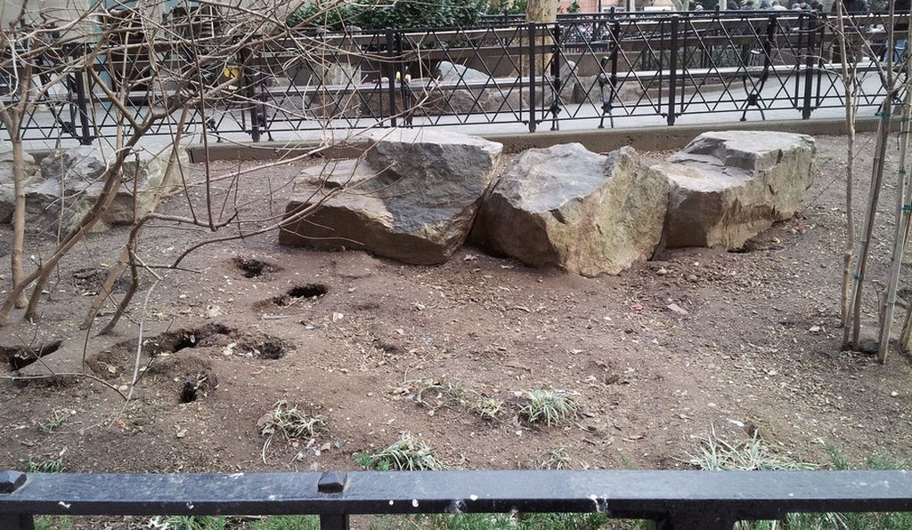 Public park in Manhattan, home to a rat population with over 100 visible burrows.