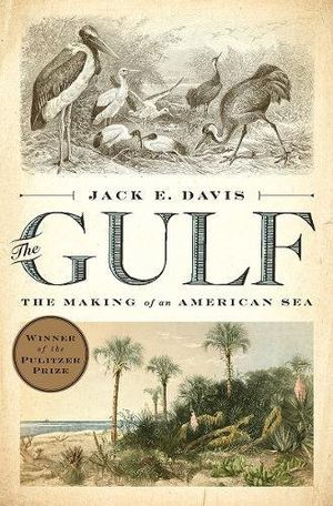 Preview thumbnail for 'The Gulf: The Making of An American Sea
