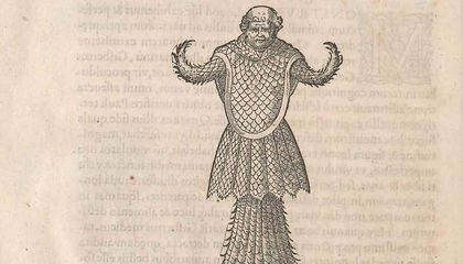 Renaissance Europe Was Horrified by Reports of a Sea Monster That Looked Like a Monk Wearing Fish Scales