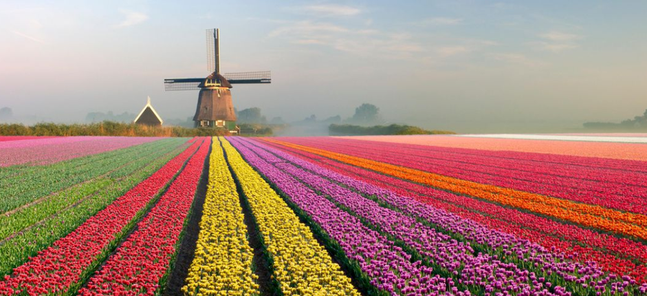 Virtual Journey: Waterways of Holland and Belgium Experience the magnificent art collections, spellbinding gardens, and enchanting villages from the comfort of home.