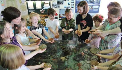 Be Part of a Catch-and-Release Aquarium in Scotland