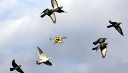 Delivery by Drone