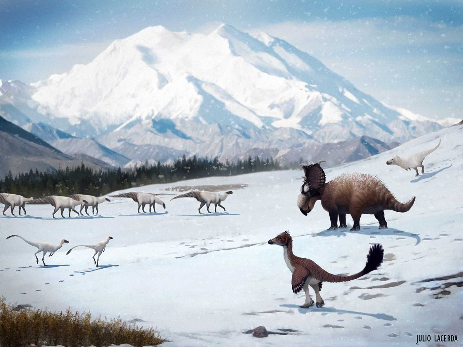 How Dinosaurs Thrived in the Snow