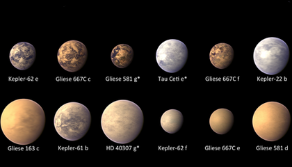 The Top 12 Habitable Exoplanets