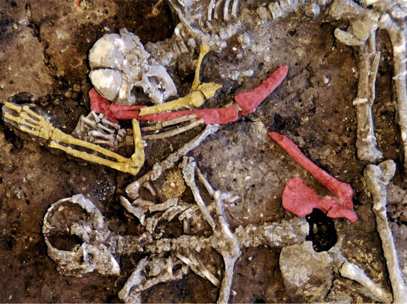 7,000-Year-Old German Grave Shows New Side of Neolithic
