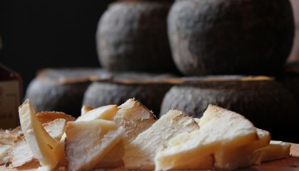 The Oldest Cheese in the World Was Found on Chinese Mummies