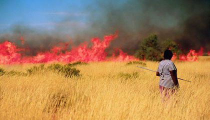 native person manages fire burning in  australian desert