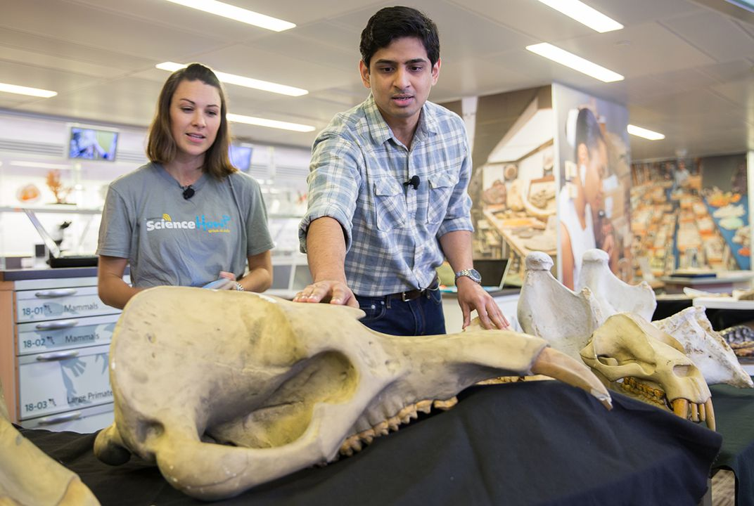 Meet Advait Jukar, a scientist who studies fossil elephants