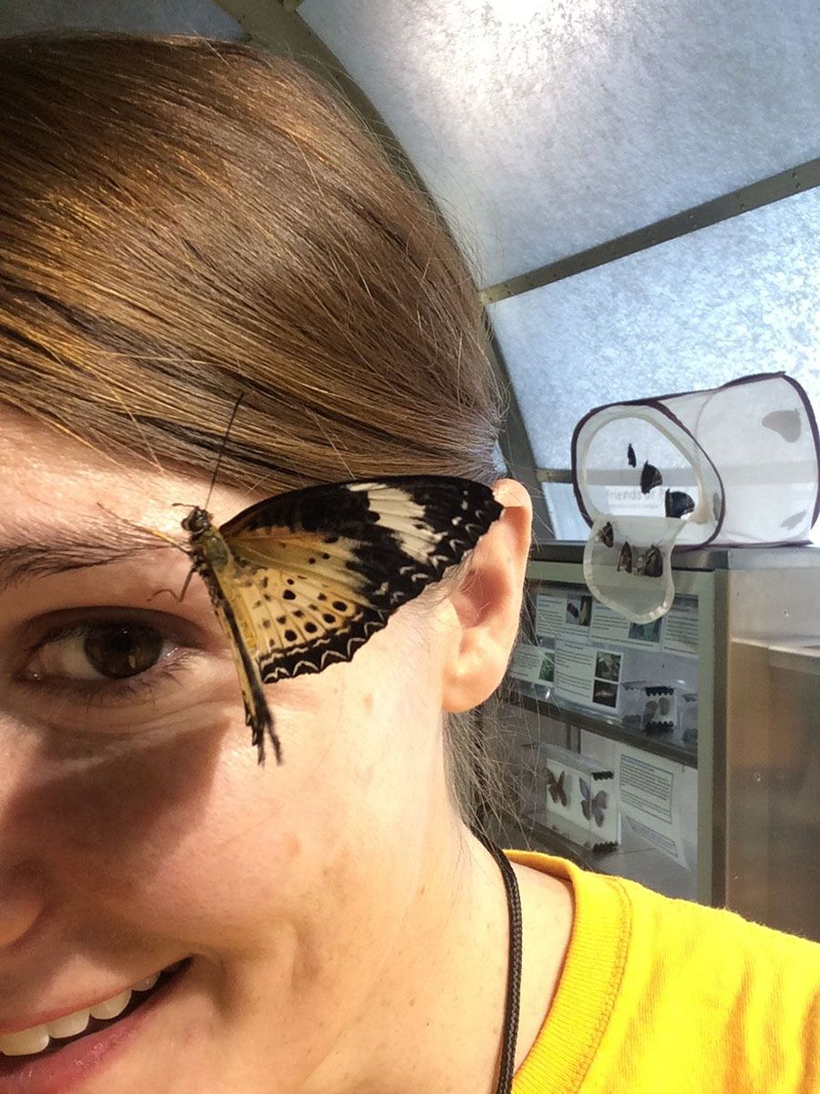 My sweaty forehead is helping supply this butterfly with nutrients.