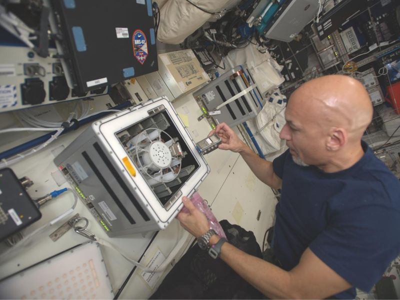 Astronaut in a blue t-shirt puts a small vial of bacteria and basalt in a centrifuge on the international space station