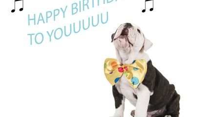 """Image: It's settled: Now you can sing """"Happy Birthday"""""""