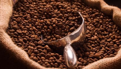 A Guide to Buying Ethical Coffee