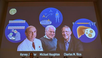 Nobel Prize in Medicine Awarded to Three Scientists Who Discovered Hepatitis C